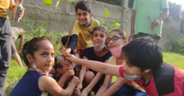 Plantation drive by Indosam75 Residents