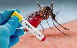 बच्चों में डेंगू, चिकनगुनिया और मलेरिया बुखार- रोकथाम, लक्षण और उपचार